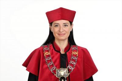 prof. AEH dr hab. Anna Llanos-Antczak